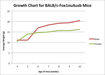 BALB/cnu growth chart