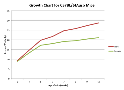 C57BL/6  Growth Chart